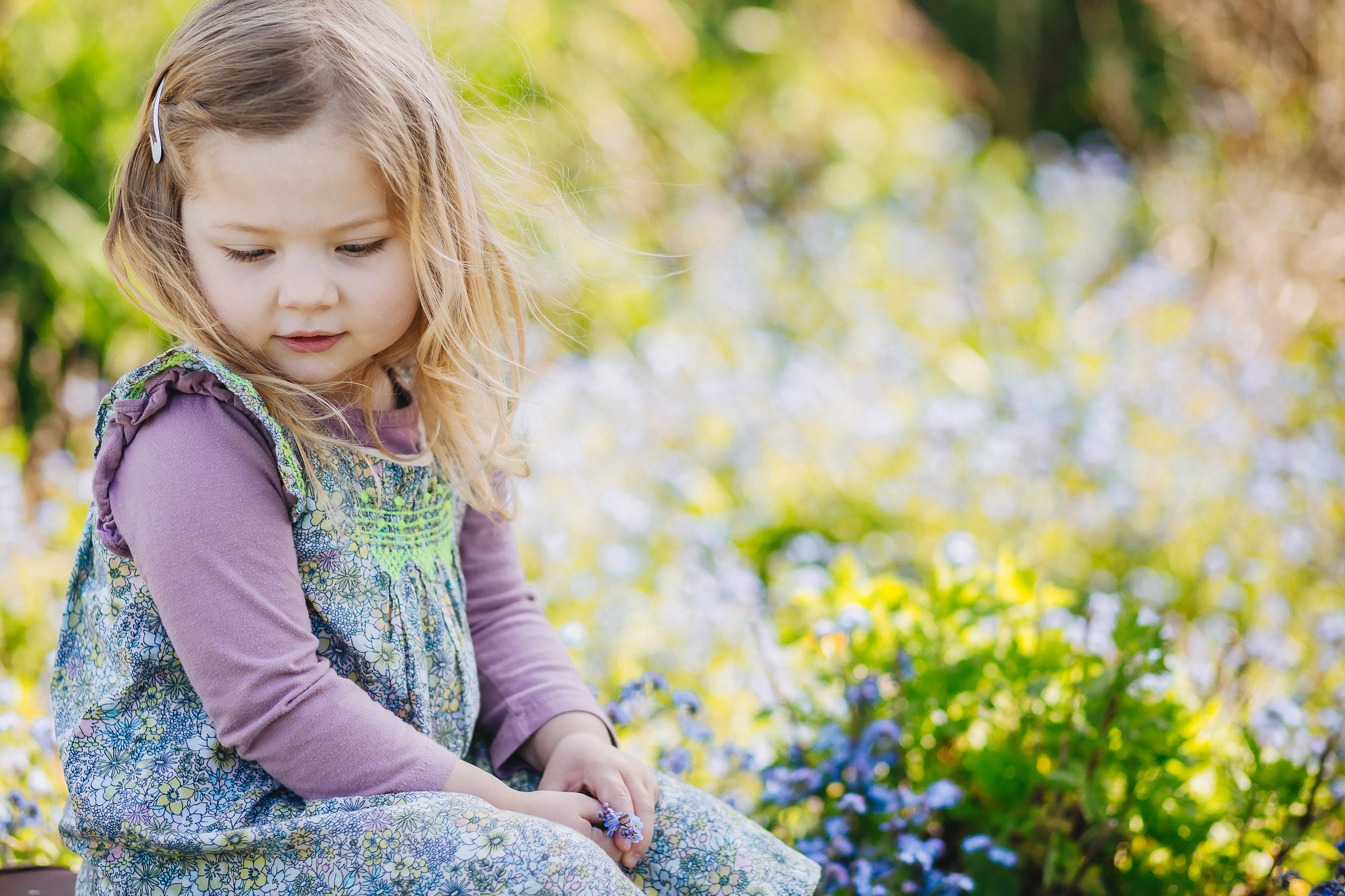 Little girl sitting in forget me nots