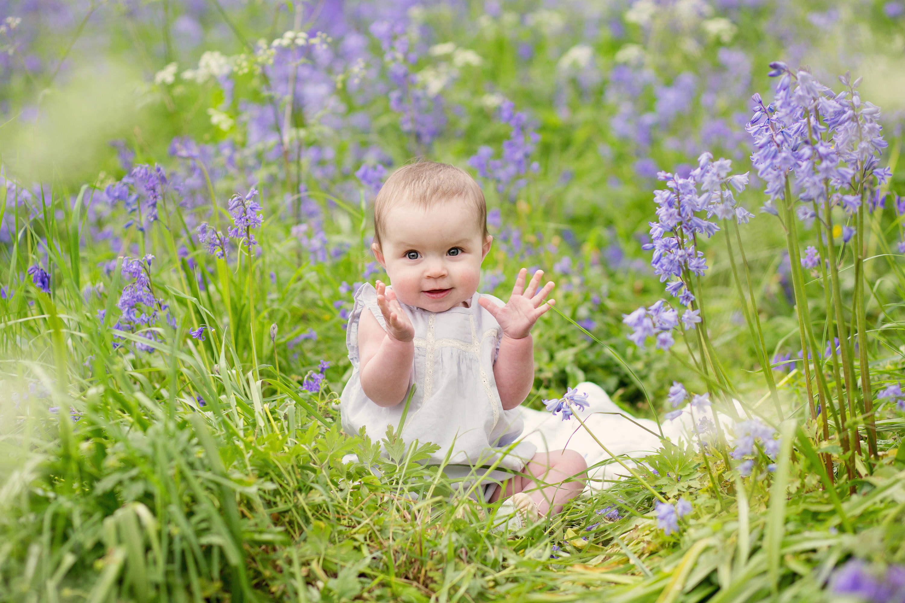 Bluebell photo shoot South Wales