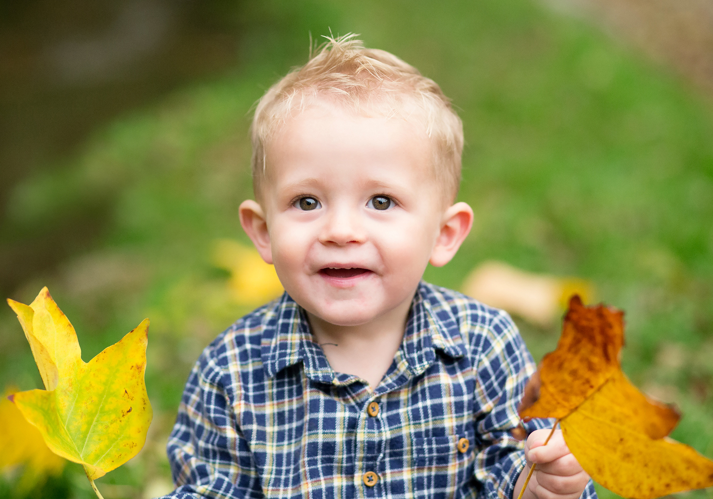 toddler holding leaves